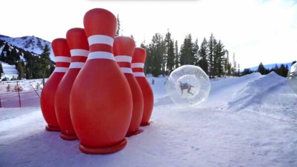 Bowling Humain