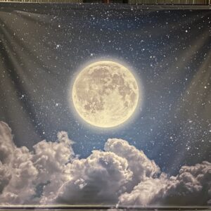 Toile ciel avec lune de Noël